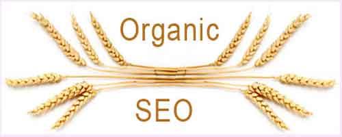 organic-seo.jpg