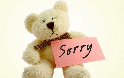 sorry_baer.jpg